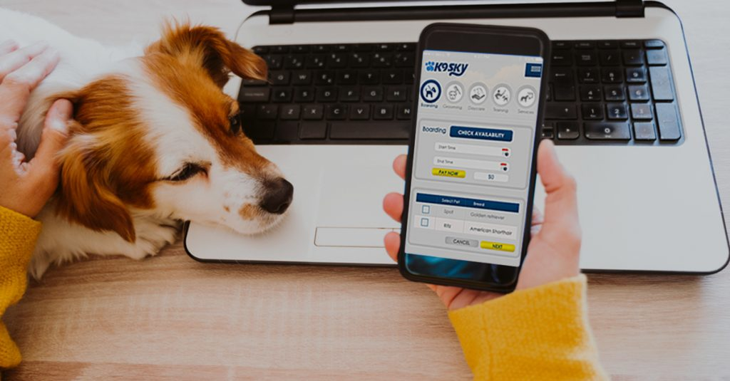 Grooming Software: A Vital Tool to a Successful Pet Grooming Business Startup